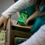 Michigan Girl Scouts council sues Girl Scouts USA