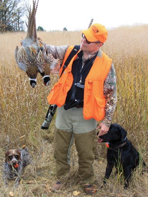 Local game farms offer opportunities to polish the hunting routine before pheasant opener.