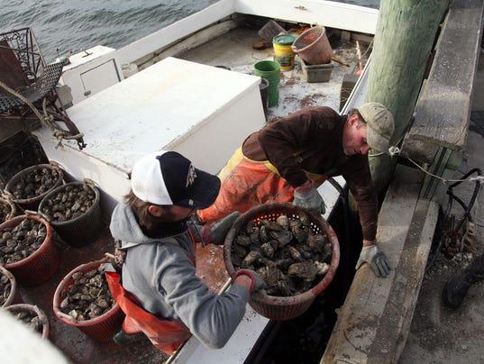 635971965121237839-Oysters.jpg