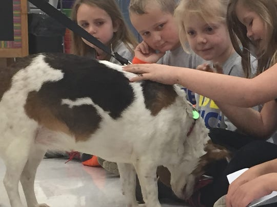 Bella, a guest at the Muskingum County Animal Shelter, visited Roseville Elementary accompanied by the society's executive director, Jody Murray. Murray taught students the importance of being kind to everyone - including furry friends.