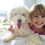 3 tips for teaching young kids about dog safety