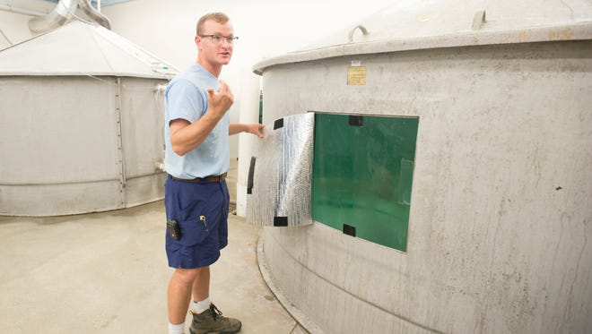 Hatchery manager Max Westendorf talks Thursday, Nov. 9, 2017, about the broodstock holding room at the Alabama Department of Conservation Division of Marine Resources'Claude Peteet Mariculture Center in Gulf Shores, Alabama. Staff control the light and temperature in the tanks to speed up the process of spawning from one year to six months.