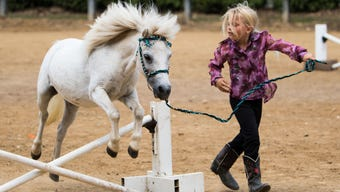 "Maeve Russell shows how to ""sidepass"" a horse or make him walk sideways."
