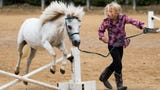 """Maeve Russell shows how to """"sidepass"""" a horse or make him walk sideways."""