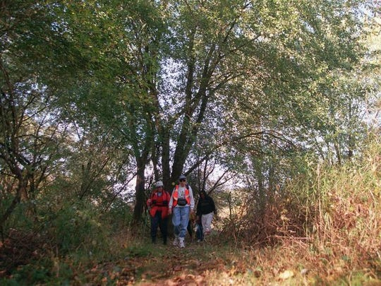 Enjoy a 4-5-mile hike in Sussex County on Saturday.