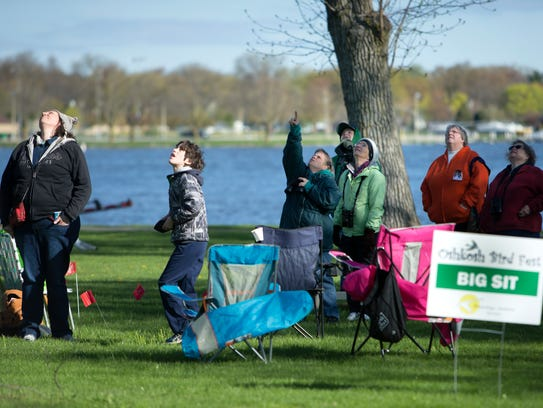 Elliot Casteel and others look into the sky and trees to spot interesting birds May 6 at Menominee Park during the Oshkosh Bird Fest.