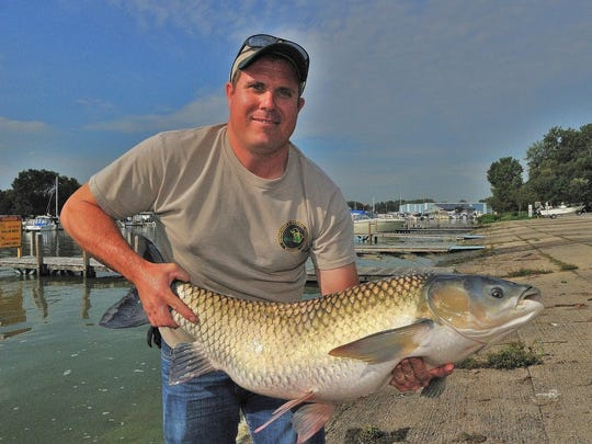 Michigan Department of Natural Resources fisheries biologist Cleyo Harris displays a Lake Erie grass carp.