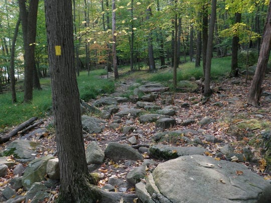 This is one of the rocky paths from the 5.6-mile hike from the Menomine Trail to the Appalachian Trail at Harriman State Park.