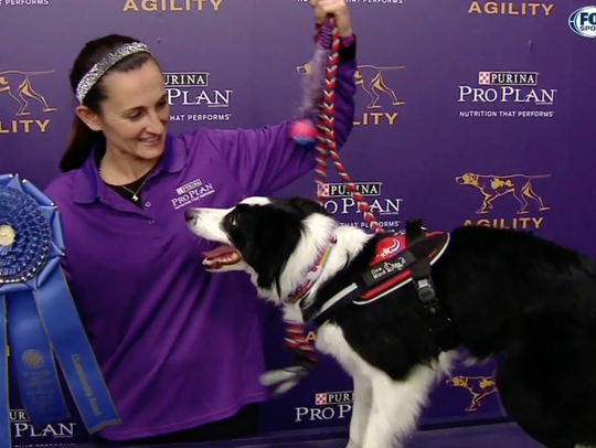 Handler Jessica Ajoux with her border collie, Fame(us),