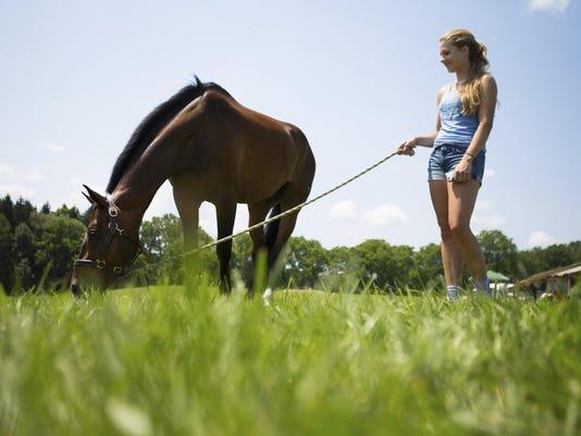Petracca stuart horse trials B 071015 Metro