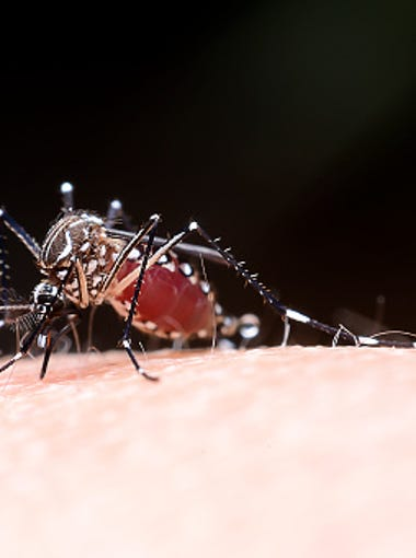 Because of the health concerns from West Nile virus,