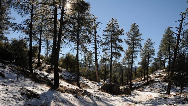 This trail in Payson is a pretty place to hike in the snow