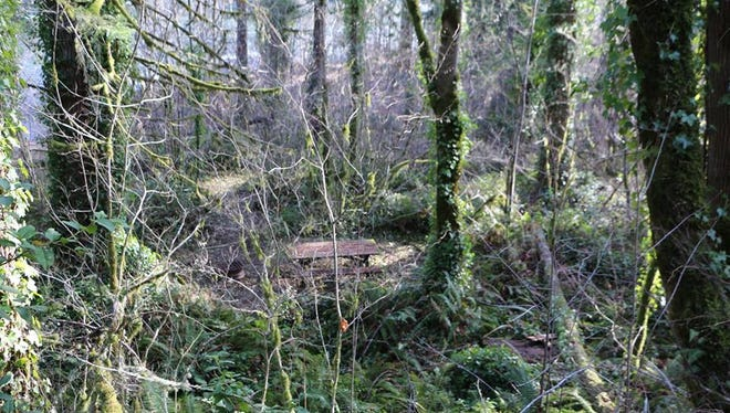 Inmate workers uncovered three picnic areas hidden by brush at Minto Park near Gates.
