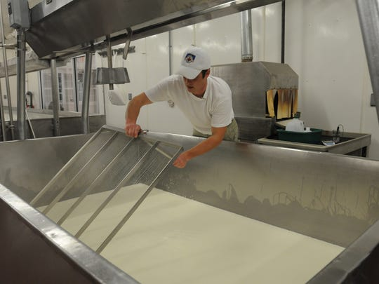 Jon Metzig slices the cheese which will make the curd for a European-style cheese he is making at Willow Creek Cheese in this 2010 photo. Cheese making is predominate, but not Wisconsin's only food manufacturing industry.