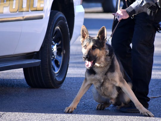 K9 Brutus, known widely as K9 Clint, stands ready to take a suspect down during a demonstration in this file photo from January 2018.