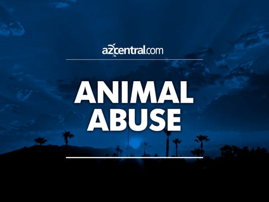 azcentral placeholder Animal abuse