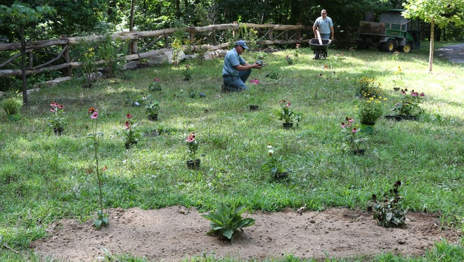 Ramon Acosta and Helio De Moraes plant perennial flowers in the natural burial section of Sleepy Hollow Cemetery Aug. 20, 2015.