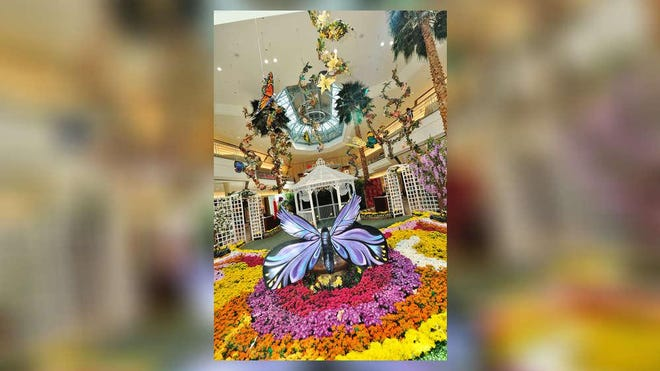The Gardens Mall will open its Garden Gazebo Friday morning. Visitors can snap photos amid flowers and giant butterflies, and share them on social media.
