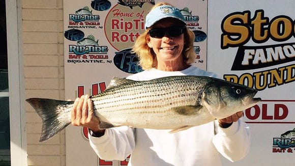 "Linda D with a 31"", 11 lb., striper that she landed"