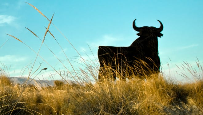 Photo illustration of bull in a field.