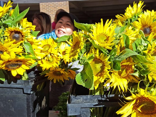 Pretty sunflowers appeared at Mai's Homegrown stand at the Downtown Farmers' Market.