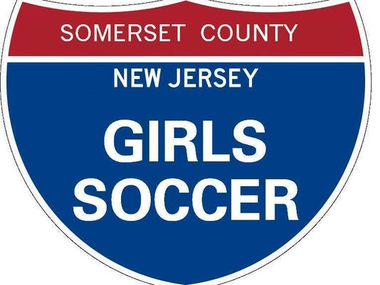 Somerset County soccer sign