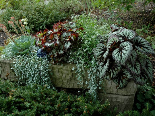 Learn about hypertufa, molding and sculpting plant containers, at McKee Botanical Garden on Jan. 28.