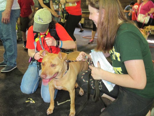 Anna Remze, 20, of Wilmington prepares to leave with her newly adopted dog Saturday at the Mega Adoption Event.