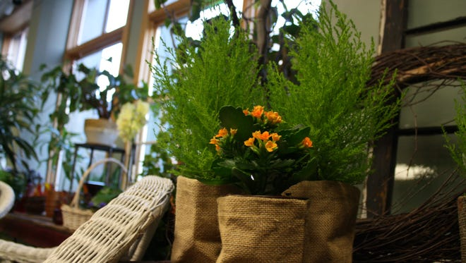 Genarelli's Flower shop was one of the participants in Saturday's VINES Coffee Bag Silent Auction.
