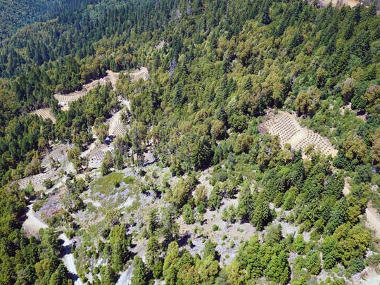 Humboldt County law enforcement officials say this compound atop a remote mountainside is typical of illegal marijuana grow operations in the so-called Emerald Triangle of Northern California.