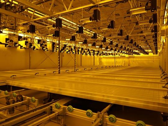 The medical marijuana growing facility for Harmony