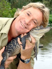 Steve Irwin poses with a three foot long alligator