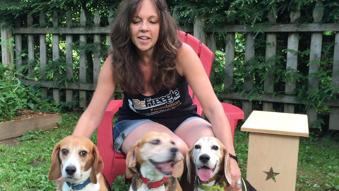 Kate Aubry, executive director of the BeFreegle Foundation, with (l-r) Odie, Jasper and Loki, who will be available for adoption on Saturday at PetSmart, the Cortlandt Town Center, Mohegan Lake.