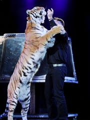 Jay Owenhouse with one of his tigers, Sheena. Owenhouse