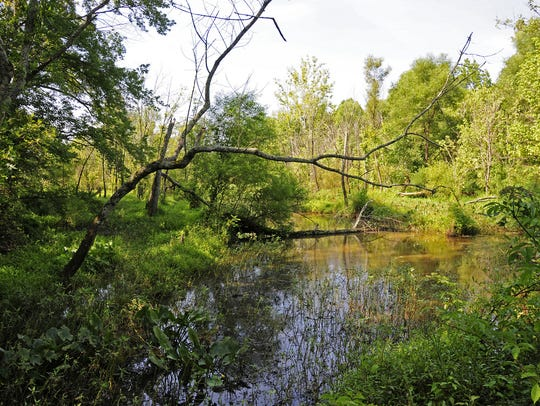 Lake Conestee Nature Park is a 400-acre of natural