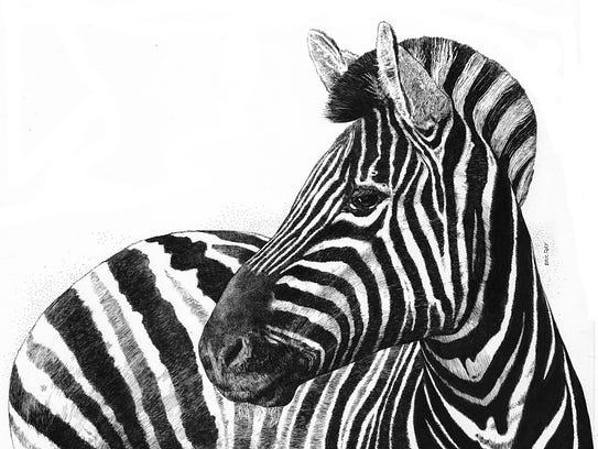 """""""Zebra Watching"""""""