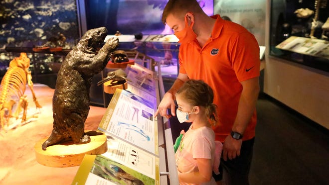 William Howell and his daughter Emma, 7, look at one of the exhibits in the fossil area of the Florida Museum of Natural History on Friday, the first day the museum has reopened during the COVID-19 pandemic, in Gainesville.