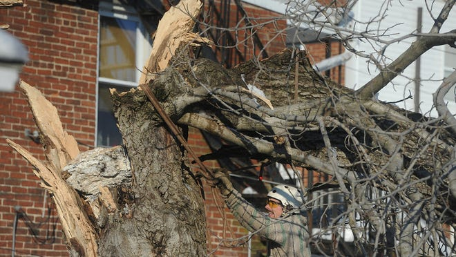 William Jacobus, a arborist with Amspacher Tree Service helps secure a line on a tree to help pull it out with a crane on Friday, Feb. 7, 2014. The tree was knocked down onto a car and a garage on North Duke street during Wednesday's storm.  Jason Plotkin -  Daily Record/Sunday News