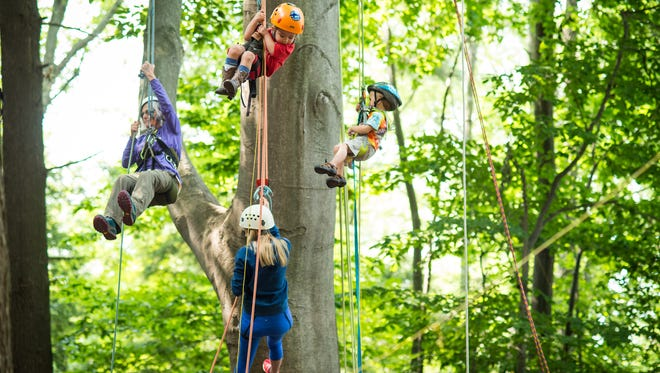 Tree Jam Camp 2015 at Camp Cavell in Lexington
