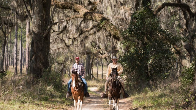 The Morton Bray Plantation features more than 3,500 acres, the original antebellum house built by architect John Wind and a timber value of more than $3.9 million. Bobwhite quail, ducks, deer and wild turkey are popular game animals on the property.