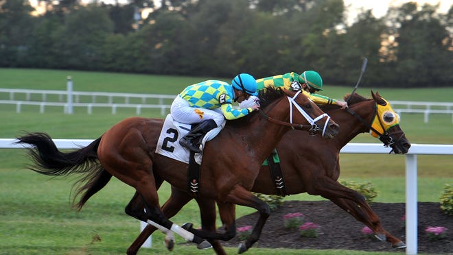 Suntracer, with Florent Geroux up, takes the inside to hold off Pyrite Mountain in the Kentucky Turf Cup.