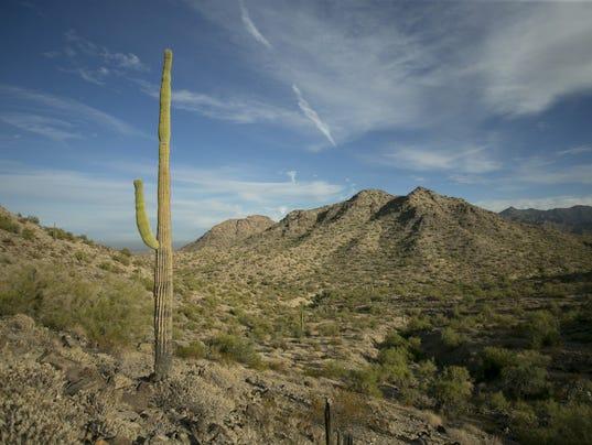 Best Hikes Valley - Estrella Mountain Regional Park