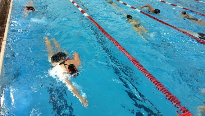Ashwaubenon, Bay Port, Pulaski and Shawano/Bonduel each had two representatives on the 2014 all-area prep girls swimming and diving team.