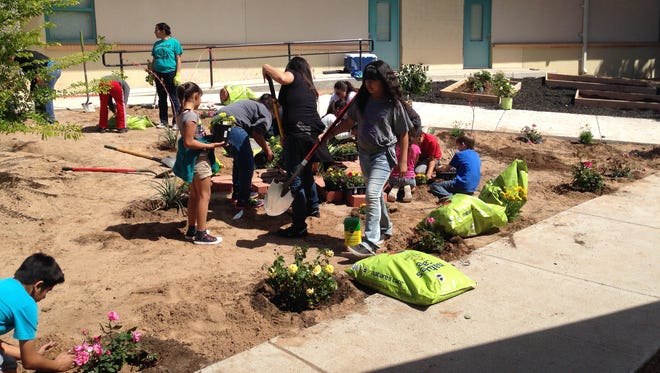 Students work on a school-community garden last year at Conlee Elementary School. NMSU College of Education professor Azadeh Osanloo is coordinating school-community gardens at Booker T. Washington Elementary and Las Cruces Catholic School this month and is looking for volunteers.