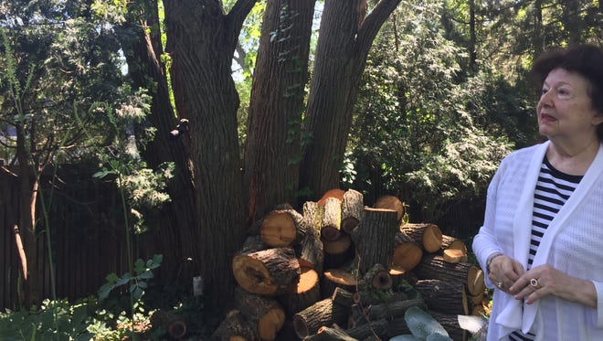 """Elaine Kristelis stands beside the remains of a large basswood tree behind her East Lansing home on Friday, June 30, 2017. Kristelis is upset by the Lansing Board of Water & Light's """"aggressive"""" tree trimming and the wood crews left behind."""