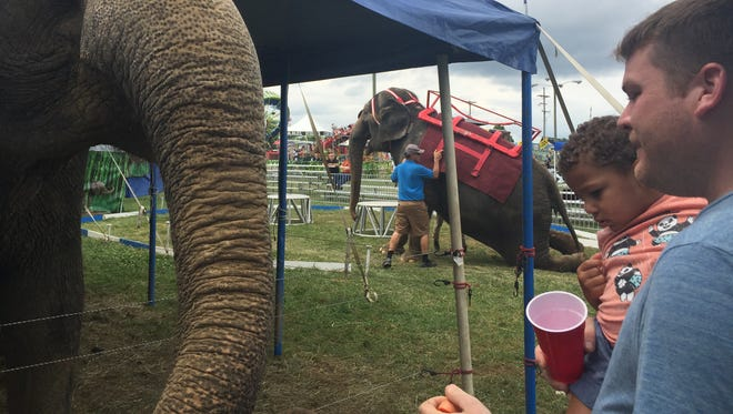 Jacob Hazzard, 2, with his father Stuart Gingrich, both of Myerstown, feeding an elephant at First Responder's Day at the Lebanon Area Fair July 22, 2018.