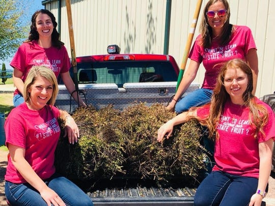 Looking for information on the state's cranberry production? Feel free to ask members of the committee (clockwise from bottom left) Heidi Slinkman, Stephanie Bennett, Mary Smedbron and Nicki Ryner.
