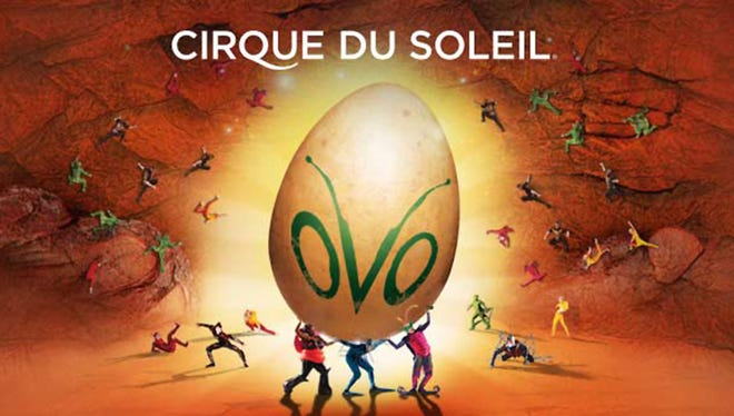 Cirque du Soleil: OVO will perform at 7:30 p.m. April 12 at the Don Haskins Center, in El Paso. Tickets range in price from $34 to $145 plus fees. Tickets are available through Ticketmaster outlets, www.ticketmaster.com and 800-745-3000.