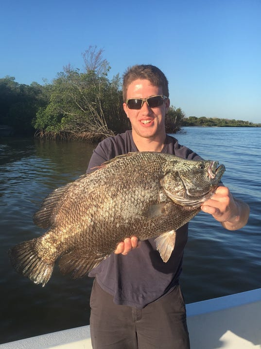 636513722429370251-tripletail-young.jpg