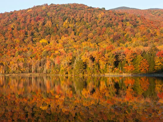 Late-afternoon light illuminates the fall foliage surrounding Belvidere Pond in Eden, Vermont, on Sunday, Sept. 28, 2014.
